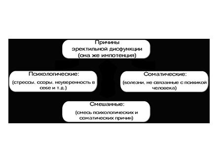 препараты избавления от паразитов организме