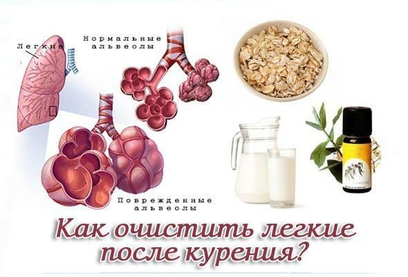 народные рецепты от запаха изо рта