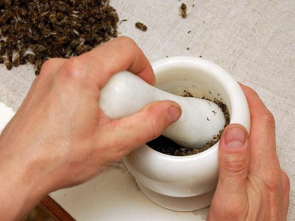 лечение подмором пчел рака простаты