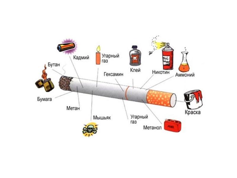 Влияет ли табакокурение нате повреждение потенции