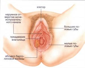 Моей жене натирает влагалище во время секса