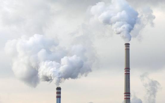Бразилия бьёт тревогу: загрязнённый воздух снижает возможности выработки спермы