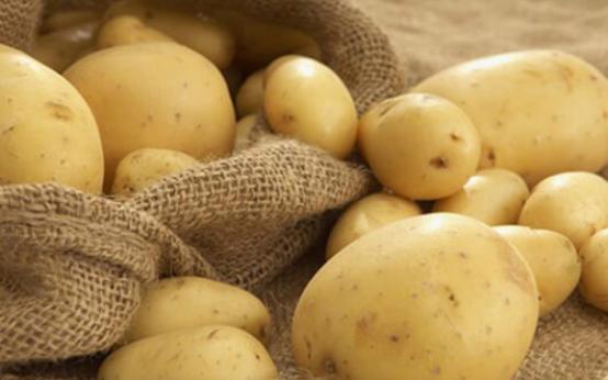 Картофель от геморроя — средство народной медицины, которое всегда под рукой