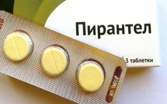 Аскариды: лечение у взрослых людей и беременных женщин