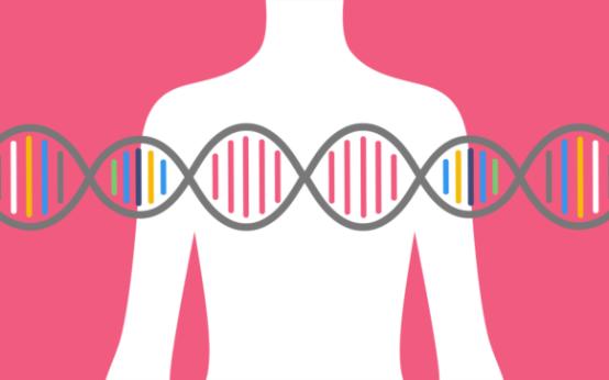 Рак молочной железы: причины, симптомы и лечение