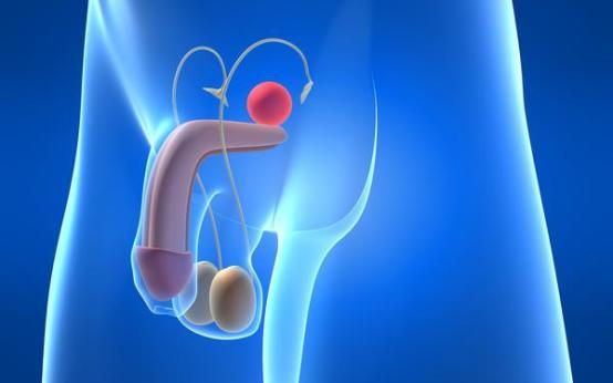 Фиброз простаты: симптомы и методы лечения