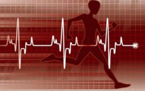 Физические нагрузки при гипертонии: динамические упражнения для крупных мышц