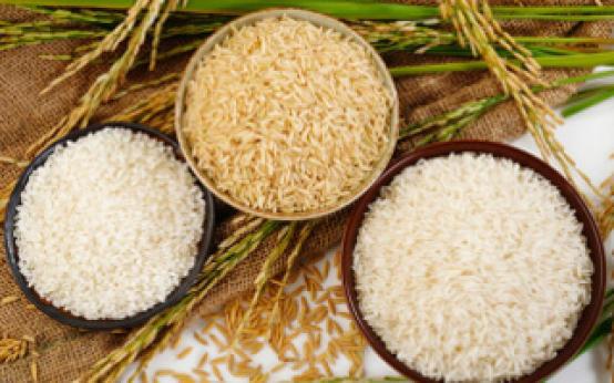 Лечение рисом остеохондроза: избавляемся от соли