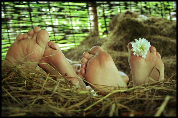 Любовь на сеновале