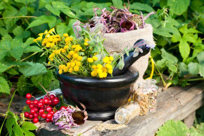 Народные средства и травы