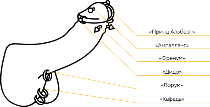 Схема мужского пирсинга